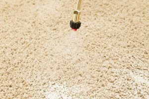 voorbehandeling tapijt reinigen